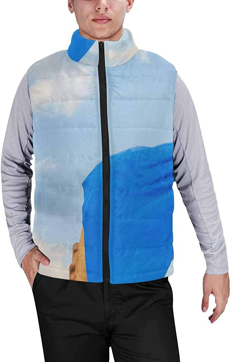 InterestPrint Men's Soft Stand Collar Jacket for Fishing Hiking Cycling a Black Unicorn Dancing in Space