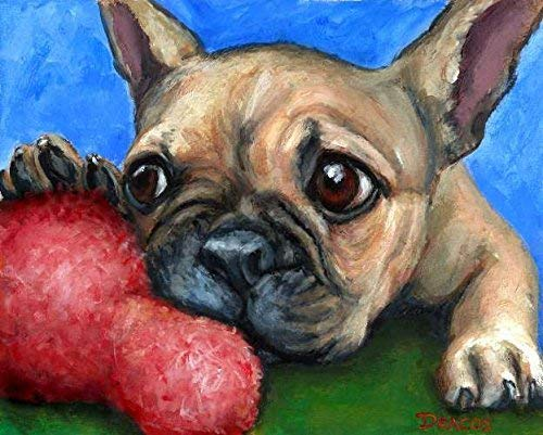 French Bulldog Dog Art Print, Fawn Frenchie Bulldog Puppy, Chewing on Toy, Print of Original Dog Painting by Dottie Dracos, Print sizes from 8x10' up to 16x20'.