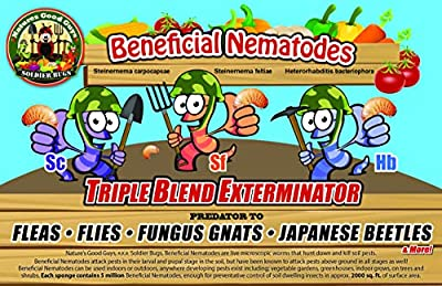 NaturesGoodGuys Beneficial Nematodes Triple Blend Pack HB+SC+SF - General Biological Pest Control