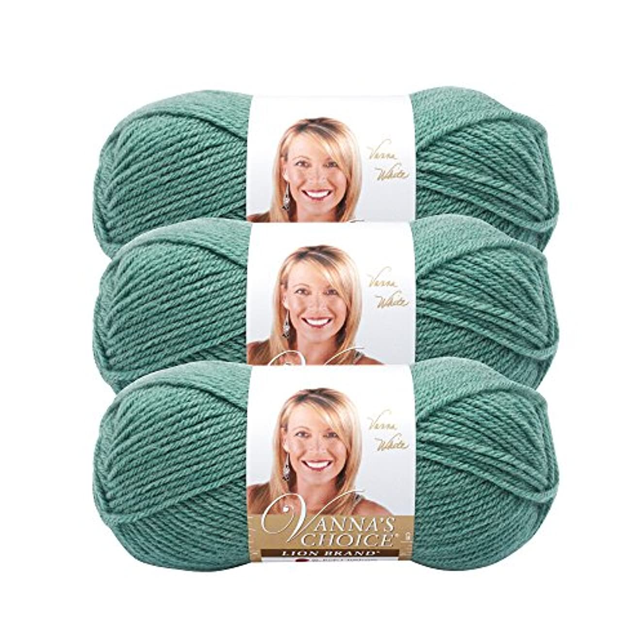 (3 Pack) Lion Brand Yarn 860-177 Vanna's Choice Yarn, Sage