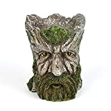 Qagazine Macetero de árbol de cara de hombre con barba verde, maceta de resina decorativa para casa, oficina, escritorio, jardín al aire libre