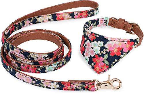Puccybell Blumen Hundehalsband mit Tuch und Hundeleine (1,2m) im Set, Bandana Halsband und Leine für kleine und mittelgroße Hunde HLS004 (S, Blau)