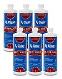 Rx Clear Algaecide 60 Plus   Non-Foaming Formula for Above Or In-Ground Swimming Pools   60 Percent Poly-Algaecide   Keeping Algae in Suspension   One Quart Bottles   6 Pack