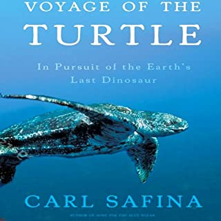 Voyage of the Turtle audiobook cover art