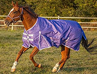 Chicks Saddlery Rugged Ride 1200 Denier Midweight Waterproof Turnout Blanket - 200 Gram Fill - Colored Binding