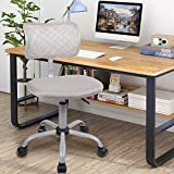 Smugdesk Mid-Back Breathable Mesh Office Desk Computer Desk Chair with Lumbar Support
