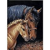 5D Diamond pintura de diamantes,Sunnay El caballo Animales Grandes Mariposas Cuadro por...