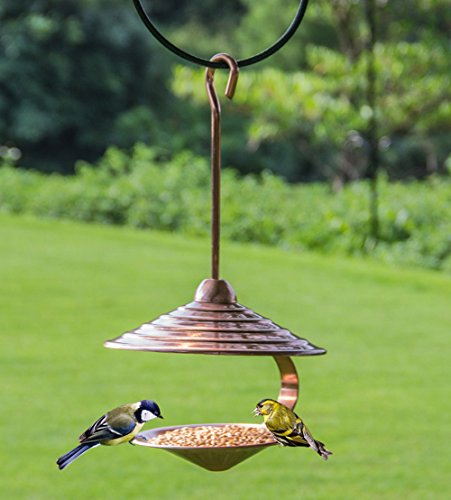 wandlee Unique colgante Humming Paloma Canarias Parrot Wild Bird Feeder–Metal shell-shape pájaro Attractant