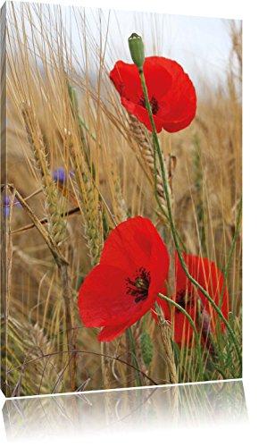 Mohnblumen im Getreidefeld, Format: 60x40 auf Leinwand, XXL riesige Bilder fertig gerahmt mit Keilrahmen, Kunstdruck auf Wandbild mit Rahmen, günstiger als Gemälde oder...