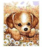 1pc Labrador Retriever Cachorro de la Cesta de la Manzanilla Flor de la Margarita Perro Mascota Animal Acrílico Diy Pintura Por Número de Hobby Kit de Inicio Decoración de la Pared de Foto
