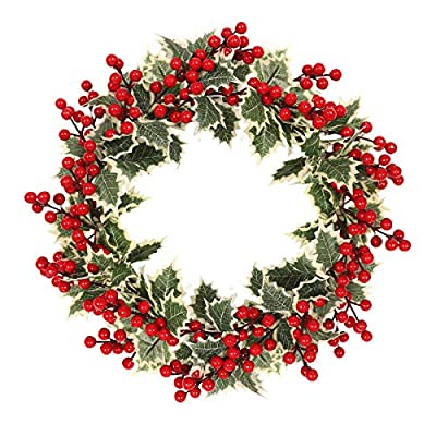 MeetSun Fall Wreath, Front Door Wreath, Christmas Wreath with Leaves and Red Berry, Ideal for Autumn & Halloween & Thanksgiving Day, Indoor Outdoor Decor