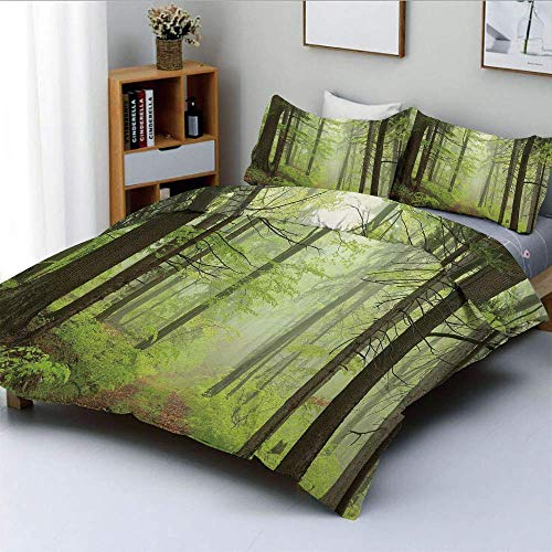 Juego de funda nórdica, Trail Trough Foggy Alders Beeches Oaks Coniferous Grove Senderismo Theme Juego de cama decorativo de 3 piezas con 2 fundas de almohada, verde claro, amarillo claro, el mejor re