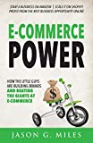 E-Commerce Power: How the Little Guys are Building Brands and Beating the Giants at E-Commerce