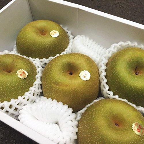 和梨シーズン到来 甘味たっぷり 水分豊富 幸水 豊水 南水 梨 なし 2kg 化粧箱入