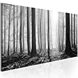 murando - Bilder Wald 135x45 cm Vlies Leinwandbild 1 TLG