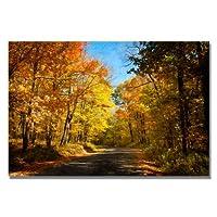 Fall Walkway by Lois Bryan 16x24-Inch Canvas Wall Art 【Creative Arts】 [並行輸入品]