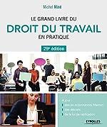 Le grand livre du droit du travail en pratique - A jour : des six ordonnances Macron, des décrets, de la loi de ratification de Michel Miné