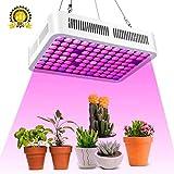600W Led Horticole,Roleadro Lampe pour Plante Lampe Horticole Croissance Floraison Full Spectrum Led Grow Light pour Plantes Fleurs et Légumes Intérieur Hydroponique Germination