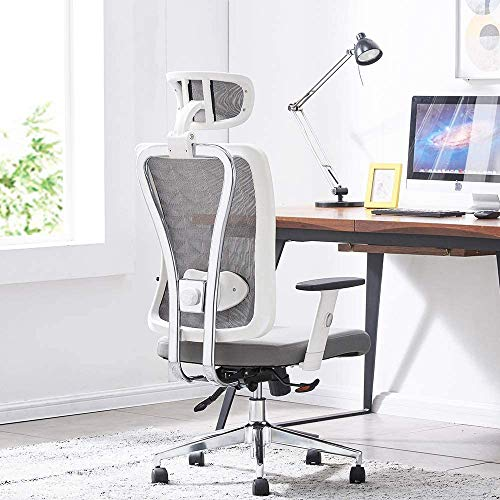 Cedric Office Chair Review