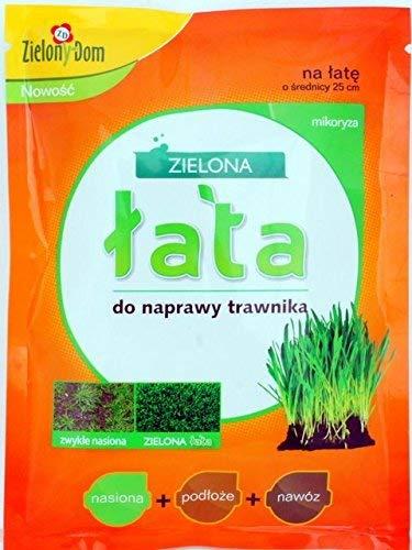 Kit de réparation de pelouse Green Patch - semences + engrais + substrat + mycorhizes -