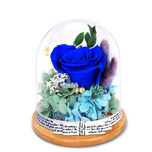 KING DOO Forever Rose in Glass Dome - Eternal Handmade Flowers Galaxy Royal Blue Roses idea Gifts for Women or Friend or Family on Christmas Valentine's Day Birthday Anniversary Mother's Day