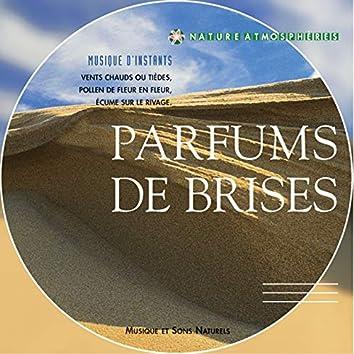 Nature atmosphère : Parfums de brise (Musique et sons naturels)
