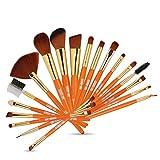 Pinceles de maquillaje 19 Set de pinceles de maquillaje for principiantes Pincel de maquillaje imprescindible for mujeres (color : Orange)