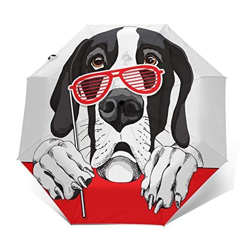 Regenschirm Taschenschirm Kompakter Falt Regenschirm, Winddichter, Auf Zu Automatik, Verstärktes Dach, Ergonomischer Griff, Schirm Tasche, Animal Dane Dog Grill
