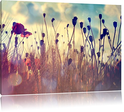 Mohn im Weizenfeld, Format: 80x60 auf Leinwand, XXL riesige Bilder fertig gerahmt mit Keilrahmen, Kunstdruck auf Wandbild mit Rahmen, günstiger als Gemälde oder Ölbild, kein Poster oder Plakat