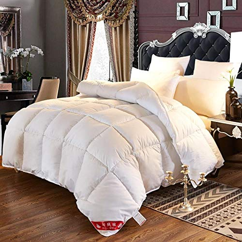 CHOU DAN Children's down quilt winter white goose down student mattress sheet 95 white goose down air-conditioning quilt warmer and mother and child quilt-2.2X2.4 4000g_P41-T-white
