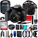 Canon EOS Kiss X9i (Rebel T7i) DSLR Camera with 18-55mm STM Lens Bundle + Premium Accessory Bundle Including 64GB Memory, Filters, Photo/Video Software Package, Shoulder Bag & More