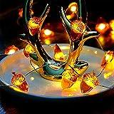 Ideapark Eicheln Deko Lichterketten, 2M 20 LED Lichterketten Batteriebetrieben mit 8 Flimmer Modi, Fernbedienung und Timer für Herbst, Halloween, Erntedankfest, Hochzeit, Geburtstag Party - 3