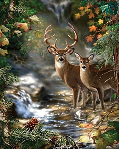 Diamond Painting by Number Kit  LPRTALK Adults Children 5D DIY Diamond Painting Animal Full Round Drill Watching Deer Embroidery for Wall Decoration 14X18 inches (Full Drill)
