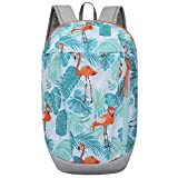 YONKINY Mochila Senderismo Impermeable Unisexo Portátil Ultra Ligera Durable Laptop Daypack Backpack Escuela Excursiones Viaje Escalada Camping Ciclismo Exterior Acampada (Azul Claro)