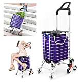 Folding Shopping Cart for Groceries, Stair Climbing Grocery Carts with Cover (Can Sit), Heavy Duty Transit Utility Cart with Rolling Swivel Wheels and Length Handle, 177 Pounds Capacity