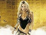 F-HO173E Shakira 47cm x 35cm,19inch x 14inch Silk Print Poster