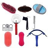 Dingln Kit 10pcs Caballo Y Estética Cuidado Equestrain Cepillo Curry Comb Caballo del Sistema De Herramienta De Limpieza