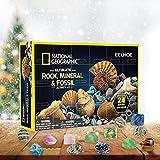 OUTEYE Mega Fossil Dig Kit Calendario dell'Avvento di Natale Confezione Regalo Minerale Giocattoli Divertenti per l'educazione della Prima Infanzia