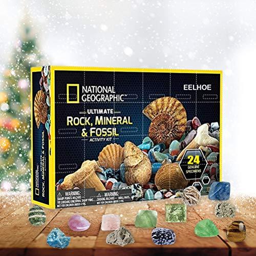 WBTY Mega Fossil Dig Kit de Navidad calendario de Adviento mineral caja de regalo divertida educación infantil