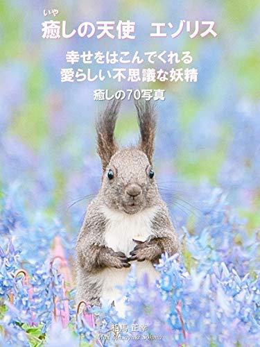 癒しの天使 エゾリス 幸せをはこんでくれる愛らしい不思議な妖精 癒しの70写真集: 北海道のかわいい動物シリーズ (SOHMA CREATE)