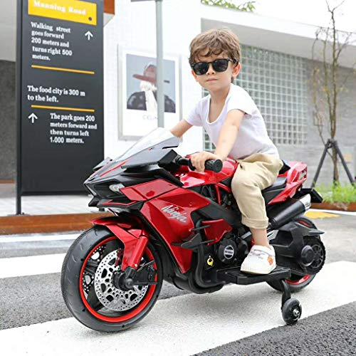 LDANDAN Kids Electric Motorcycle Ride on Toys, Mini Electric...