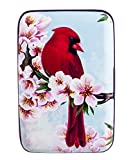 FIG DESIGNS Bird Armored Credit Card and Cash Wallet,Red,Classic