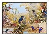 N / A James Hamilton 1000 T - Puzzle (72 x 51 cm), diseño de pájaro africano
