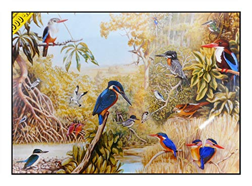 N / A James Hamilton 1000 T. Puzzle 72 x 51 cm Uccello ghiaccio Africa The KinGFISHERS 1051