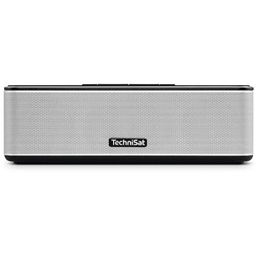 TechniSat BLUSPEAKER MINI 2 - Bluetooth-Lautsprecher (klein, tragbar, integriertes Akku, für Outdoor geeignet, NFC, Freisprecheinrichtung, mit 2 x 8 W) schwarz/silber