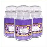 Virsus Velas perfumadas en tarro grande, juego de 3 velas perfumadas Relax Candle, aroma a lavanda