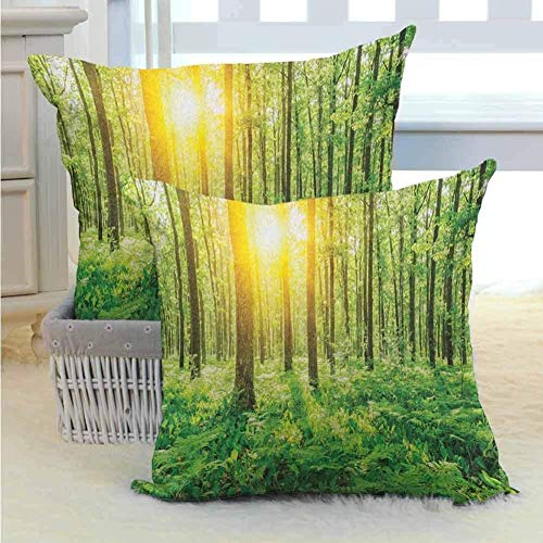 ROSECNY 2-Pack Linen Style Decorative Throw Pillows - Square Pillows 2 Pack For Sofa Bed Chair Home Fall Decor, Forest Sunset 40X40 Cm