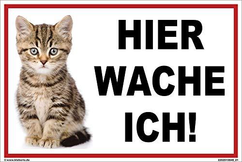 kleberio® - Hier wache ich! - Katzen Schild Kunststoff Warnschild Hinweisschild 20 x 30 cm