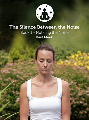 Noticing the Noise (The Silence between the Noise Book 1) (English Edition)
