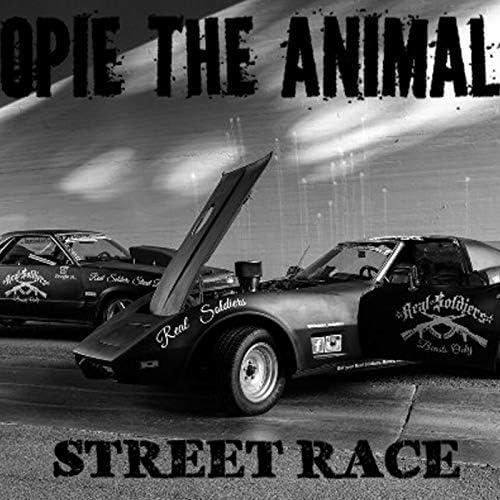 Opie the Animal